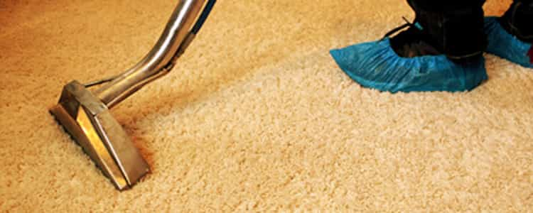 Best End of Lease Carpet Cleaning Howrah