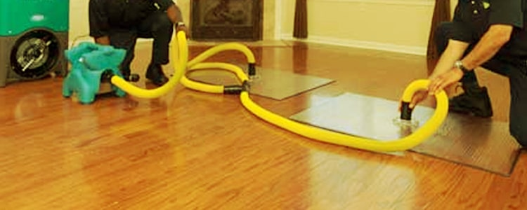Best Flood Damage Restoration Howrah