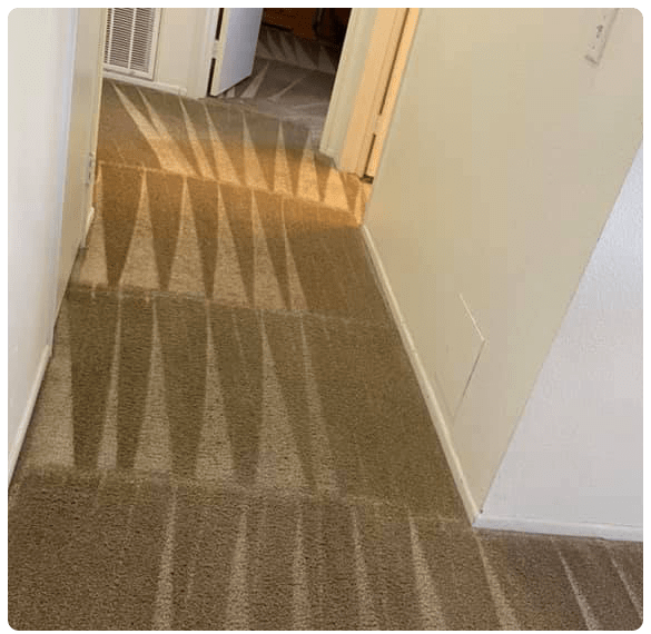 Carpet Cleaning Howrah